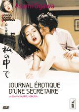 Affiche Journal érotique d'une secretaire