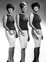 Logo The Shangri‐Las