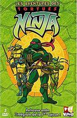 Affiche Les Tortues Ninja (2003)