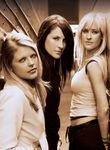 Logo Dixie Chicks