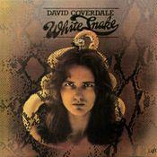 Pochette Whitesnake