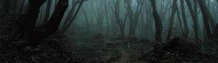 Cover Promenons-nous dans les bois...