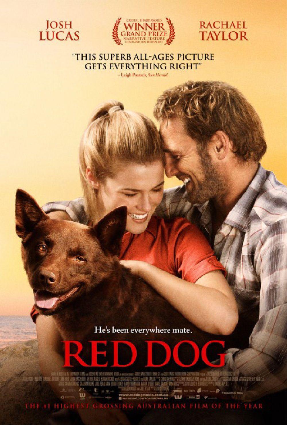 dogging göteborg film film