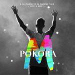 Pochette À la poursuite du bonheur Tour : Live à Bercy (Live)