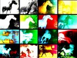 Affiche Berlin Horse