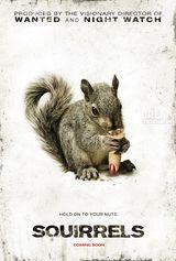 Affiche Squirrels