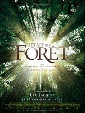 Affiche Il était une forêt