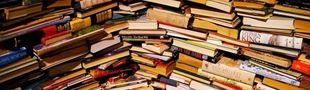 Cover Inondation littéraire d'une table de chevet (ou pile de bouquins non lus à lire)