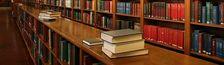 Cover Les prix littéraires de 2013