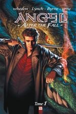 Couverture Angel After The Fall, tome 1