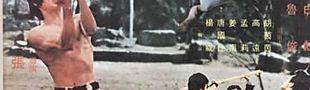 Illustration Les pires titres français de films de Kung Fu