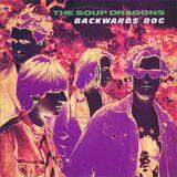 Pochette Backwards Dog (Single)