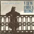 Pochette View From a Bridge (Single)