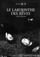 Affiche Le Labyrinthe des rêves
