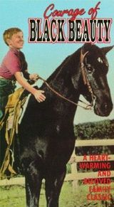 Affiche Courage of Black Beauty