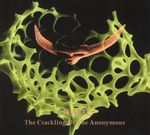 Pochette The Crackling of the Anonymous