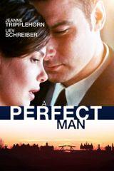 Affiche A Perfect Man