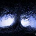 Avatar Maaëth Lunaris