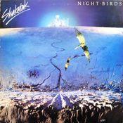 Pochette Night Birds