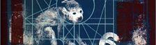 Illustration Playlist Indie Rock DGAF