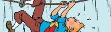 Cover Top 15 films pour l'édification du moyennement âgé (voire assez jeune) Torpenn