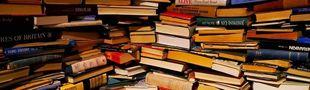 Cover Les 114 livres qui ont obtenu le Prix Goncourt