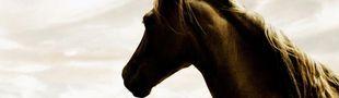Cover Les BD avec des chevaux dedans