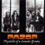 Pochette Psychillis of a Lunatic Genius