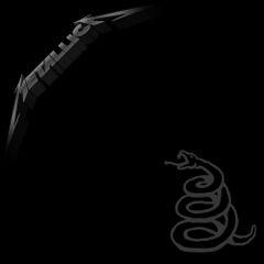 Pochette Metallica