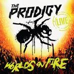 Pochette World's on Fire (Live)