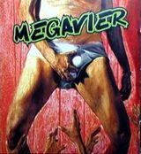 Pochette Megavier