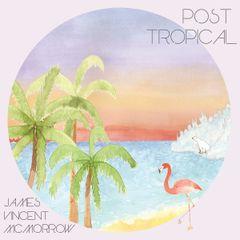 Pochette Post Tropical