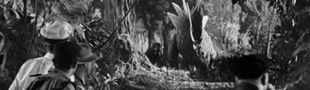 Cover Films de stégosauridés