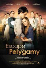 Affiche Dans l'enfer de la polygamie