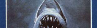 Illustration Un personnage : le requin