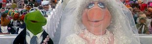 Cover Quand je serai grand(e), j'épouserai... (liste participative)