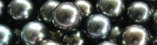 Cover Vous cherchez des perles ?