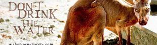 Cover Les animaux zombiefiés