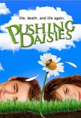 Affiche Pushing Daisies