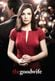 Affiche The Good Wife