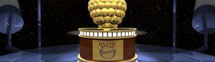 Cover Les  Razzie Awards (1981-2014) #montoprazzie#
