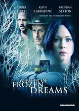 Affiche Winter of Frozen Dreams