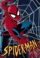 Affiche Spider-Man, L'Homme Araignée
