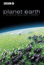 Affiche Planète Terre