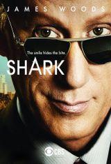 Affiche Shark