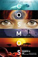 Affiche Cosmos : Une odyssée à travers l'univers
