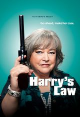 Affiche Harry's Law