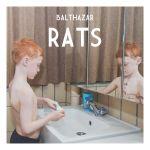 Pochette Rats