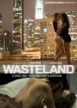 Affiche Wasteland