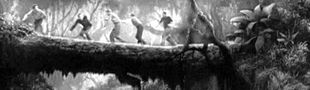 Cover Films avec des arbres qui servent de pont